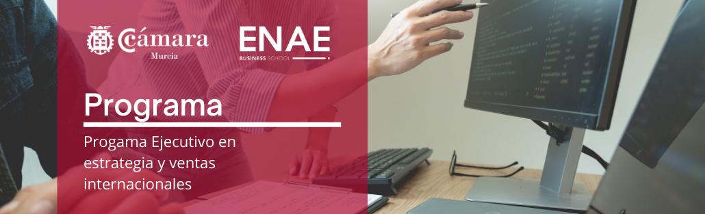Programa - Programa Ejecutivo Estrategia y ventas Internacionales - ENAE - Cámara de Comercio de Murcia