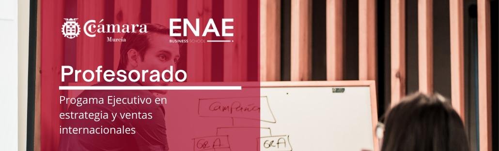 Profesorado - Programa Ejecutivo Estrategia y ventas Internacionales - ENAE - Cámara de Comercio de Murcia